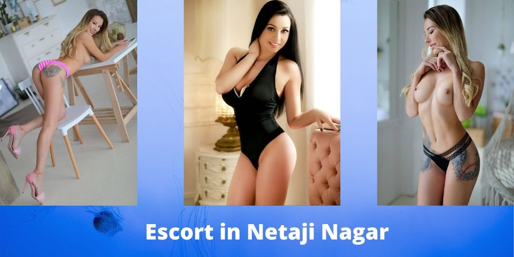 Escort in Netaji Nagar
